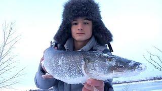 ВОТ ЭТО ЩУКИ В ДИКИХ МЕСТАХ Зимняя рыбалка на жерлицы 2021