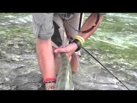 Chasing Silver  Praslin Flats Flyfishing