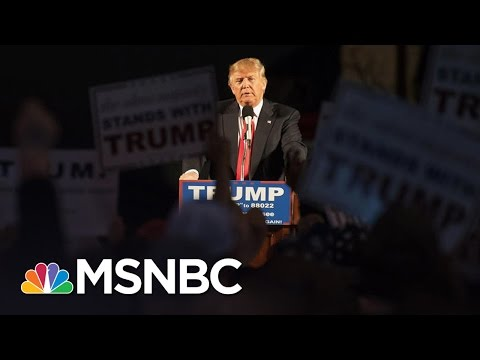 White Supremacists Invigorated By Donald Trump's Win | Rachel Maddow | MSNBC
