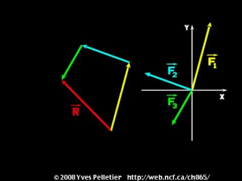 Vector sum and commutativity