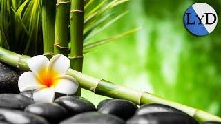 Música Relajante | Música para Dormir y Relajarse | Música de Relajación para Meditar, Yoga
