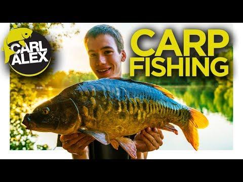 I caught a carp UP a TREE - CARP FISHING