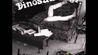 Dinosaur Jr - This Is All I Came To Do