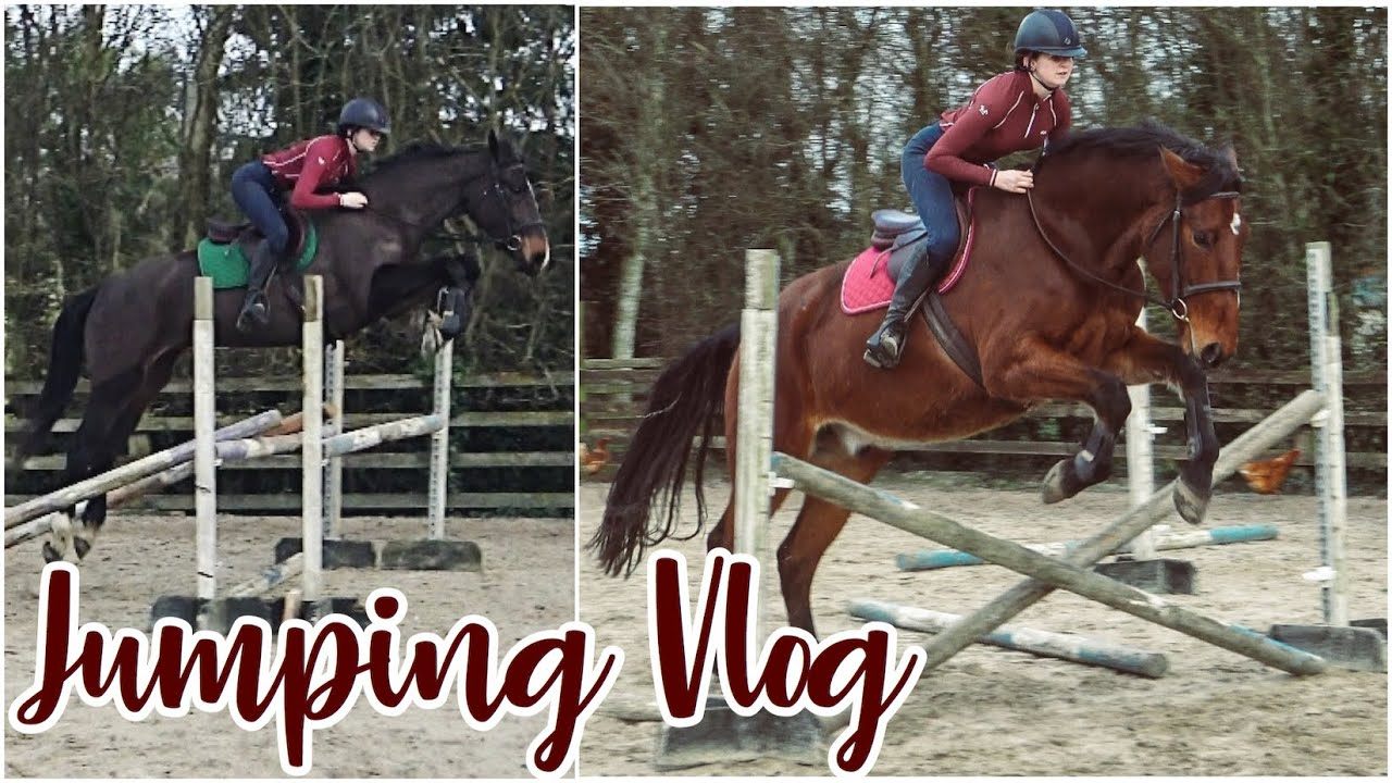 HORSE'S FIRST TIME JUMPING // Showjumping Vlog