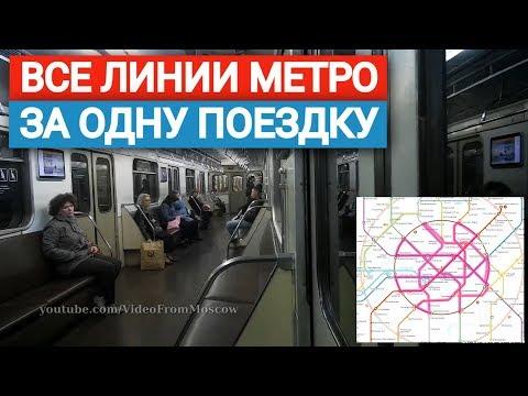 Все линии метро за одну поездку // 29 июня 2019