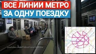 Фото Все линии метро за одну поездку  29 июня 2019
