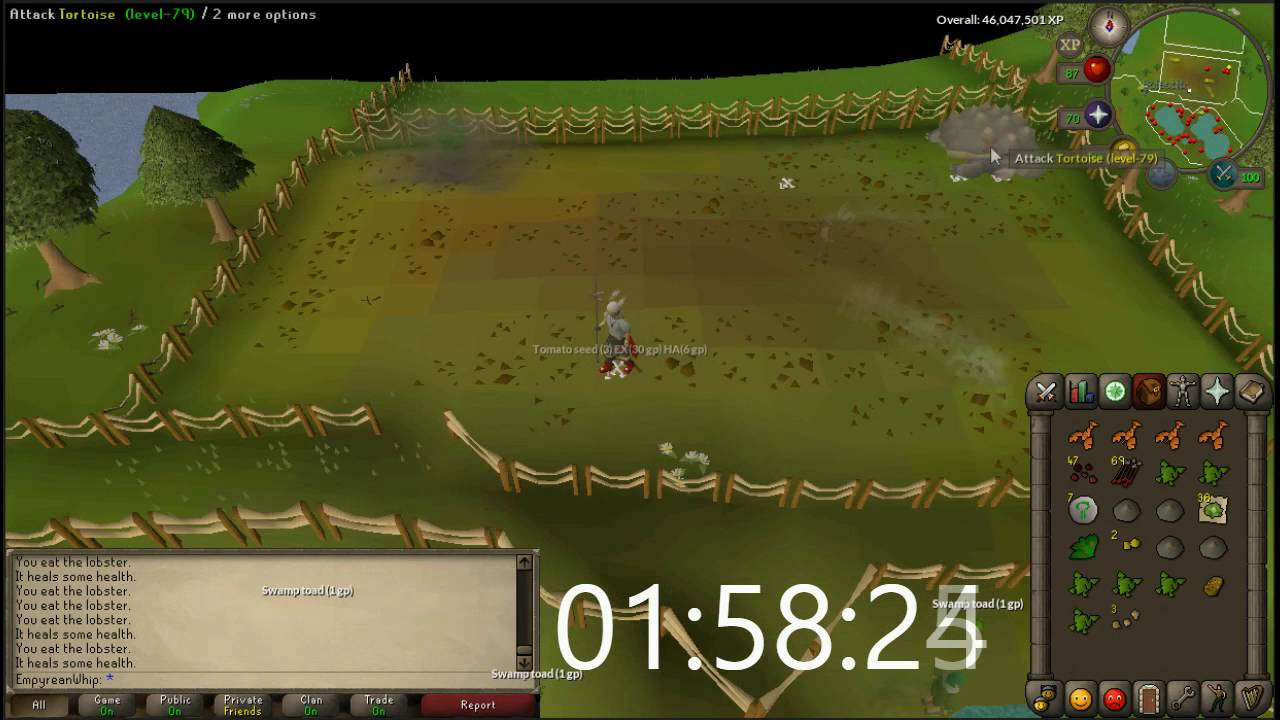 3 Hours Of Tortoise Slaughter Osrs Loot Vid Youtube