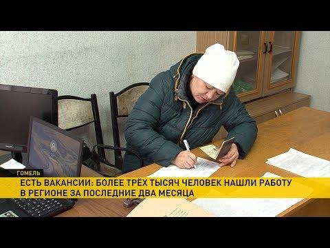 Более 3 тысяч человек за последние два месяца нашли работу в Гомельской области