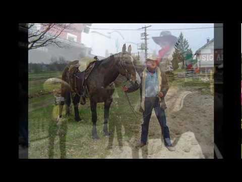es hängt ein pferdehalfter an der wand  Ronny