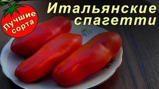 Томат Итальянские спагетти (Лучшие сорта томатов)