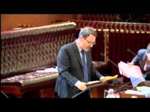 Greens MP John Kaye introducing 100% Renewable NSW bill to parliament