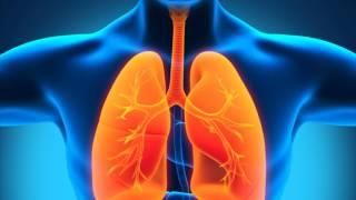 видео Воспаление легких, симптомы у взрослых, методы лечения