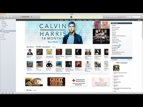 iTunes for the Confused: Buying a Song