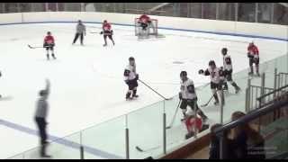 Самый неудачный силовой приём в истории хоккея(, 2014-01-12T15:57:48.000Z)