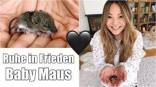 Abschied nehmen 🖤 In Gedenken an Baby Maus | Mamiseelen