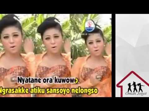 Ketaman Asmoro - Dangdut New Palapa (Karaoke)