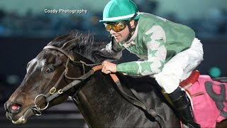 Photo Finish: Did Jockey Electrically Shock His Horse?