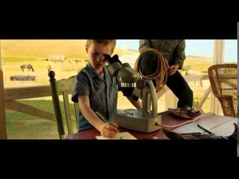 El extraordinario viaje de T S  Spivet - Trailer en español