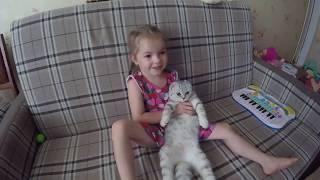😻 Коты и Дети Котенок и Яна обнимаются 🐱Милый котенок Хлоя 🐱 Видео про котят