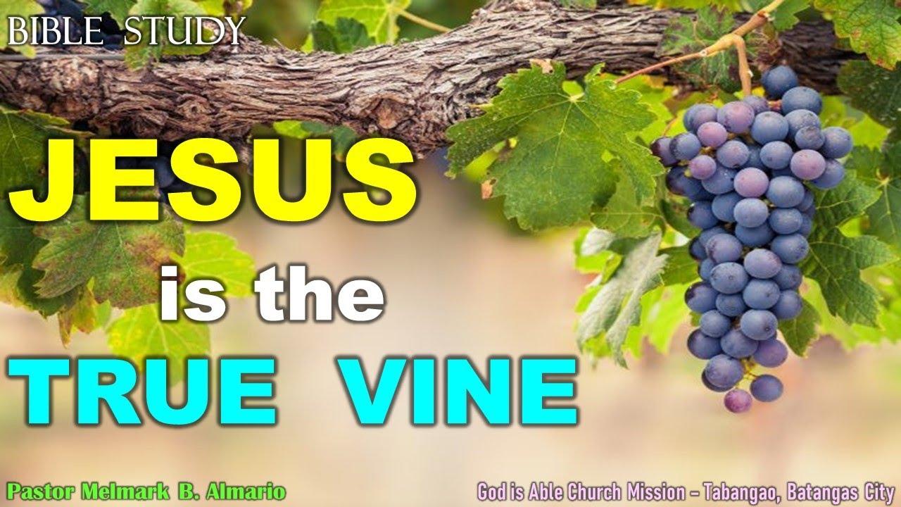 JESUS is the TRUE VINE - Bible Study - Pastor Melmark Almario