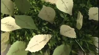 Diy Seating Cards Ideas From Martha Stewart Weddings