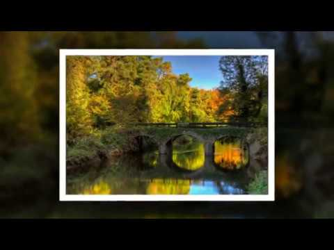 Autumn in Laois, Images by Con Murphy Photography