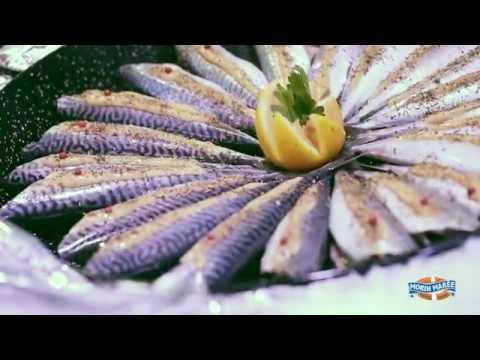 Morin Marée - La traçabilité du poisson