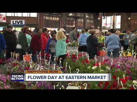 Flower Day at Eastern Market