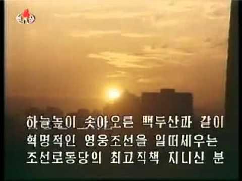 외국인이 지은 시 조선로동당의 최고령도자 김정일 360p