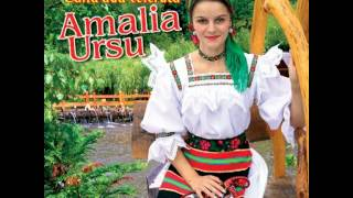 Amalia Ursu - Ne-am iubit mandrut pe ascuns