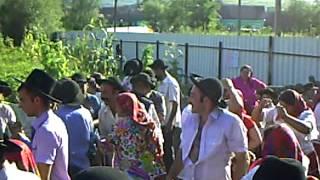 nunta la culici barghis