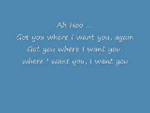 The fly - got you where I want you with lyrics