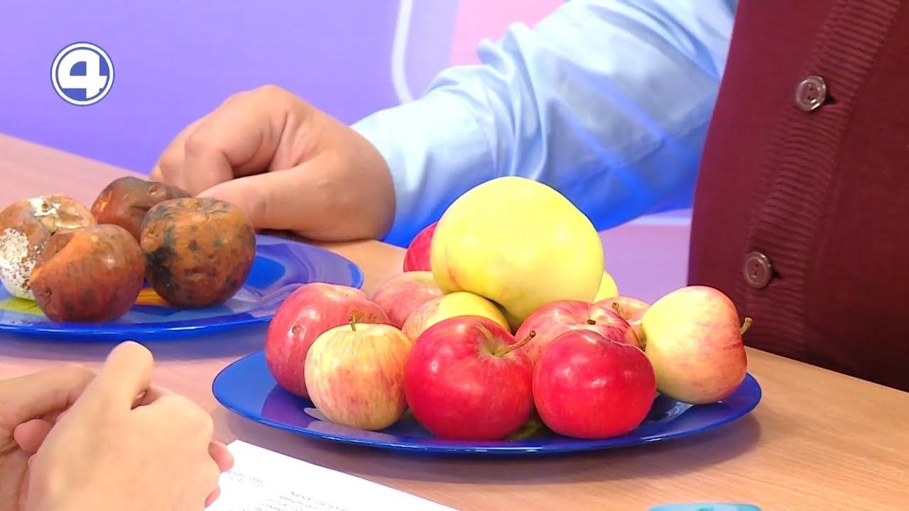 Лучшие советы о яблонях и яблоках   10.09.21