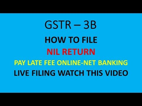 GSTR 3B NIL RETURN FILING WITH LATE FEE ONLINE PAYMENT - LIVE DEMO