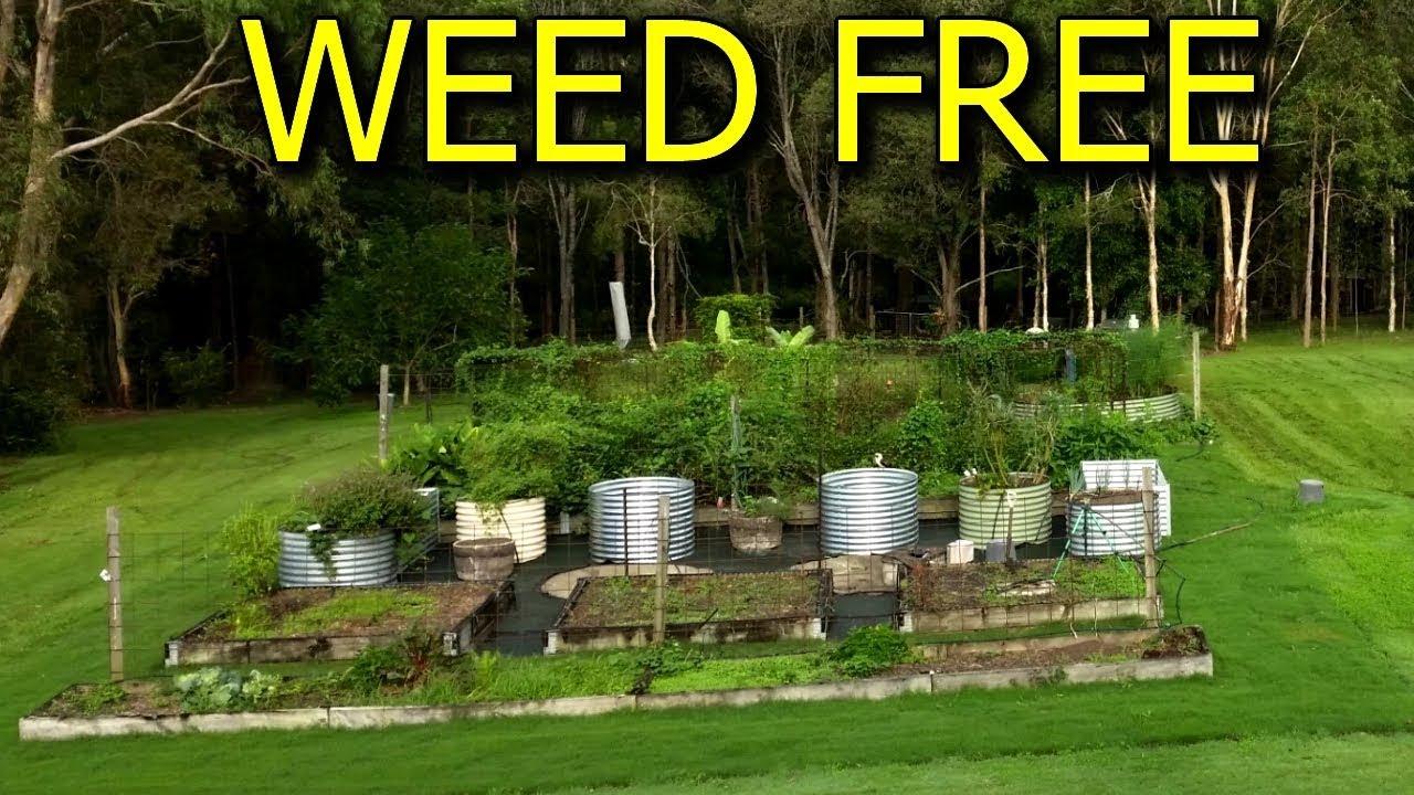 How To Make Weed Free Pathways Around Vegetable Garden