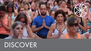 Everybody Bends | Discover | Gaiam