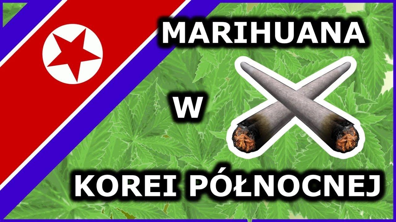 Marihuana w Korei Północnej – Gdzie można kupić? Fakty o Korei Północnej