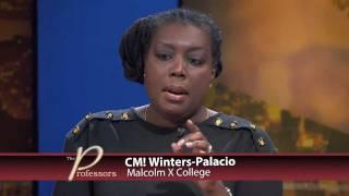The Professors - Fair Tax System