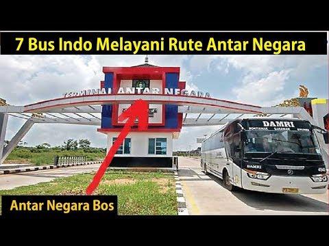 7 BUS Indonesia Melayani Rute Antar Negara