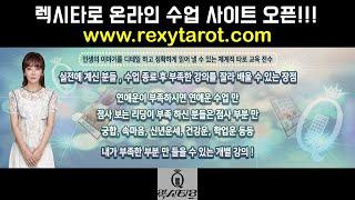 [렉시타로]온라인 사이트 오픈기념, 맛보기 수업 공개!…