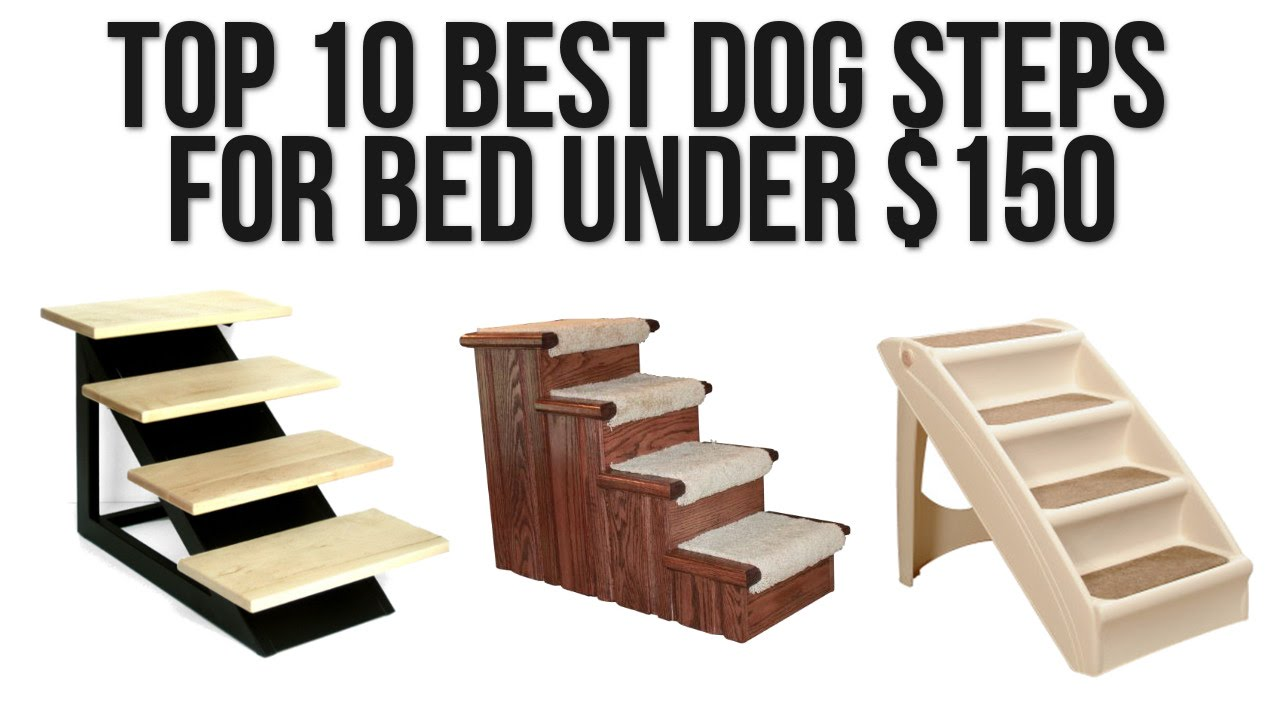 Steps For High Beds Part - 18: Top 10 Best Dog Steps For Bed Under $150 - YouTube