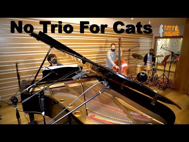 No Trio for Cats (live) | Fara Music Festival 2020 at Tube Recording Studio