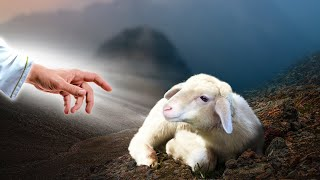Jesus Christ Destroying AĮl Negative Energy With Delta Waves | Peaceful Music Feeling Soul and Mind