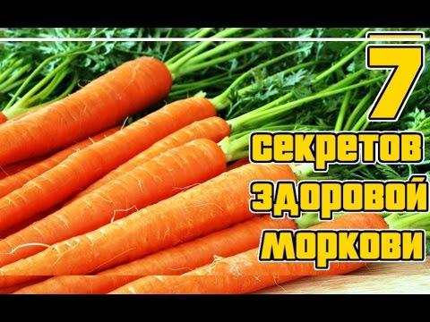 Морковь. Основные секреты выращивания / Семь правил богатого урожая моркиви