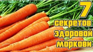 видео Как правильно посеять морковь - уход, полив, посадка, разведение