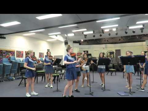 Orpheus Chamber Strings Summer