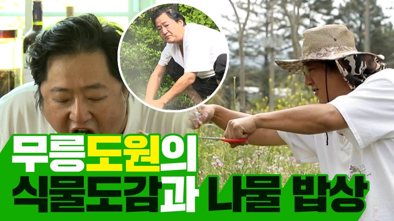 #곽도원   제주도 살이 곽농부의 나물과 꽃🌼으로 차린 공주님 밥상🍚    나 혼자 산다   TVPP   MBC 210430 방송