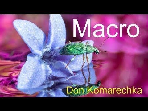 MACRO Photography Tips w/ Don Komarechka (Tony & Chelsea Live)