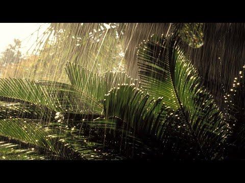 Шум Дождя и Мощная Гроза, THUNDERSTORM AND RAIN   Звуки Грома и Молнии   Снятие