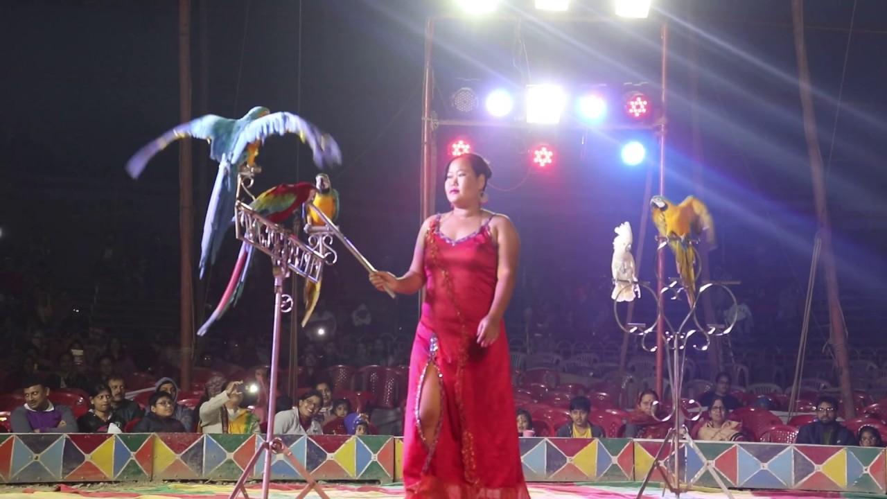 Winter Circus Köln